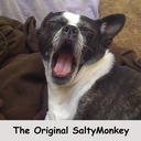 Saltymonkey2_thumb128