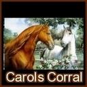 Carolscorral_horse_avatar_thumb128