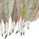 Feathers_detail_thumb128