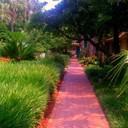 Florida_thumb128