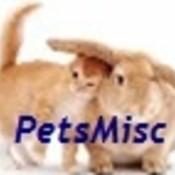 Petscute_funny_thumb175