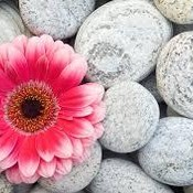 Colorful_stones_thumb175