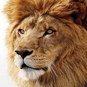 Lion_profile_pic_thumb175