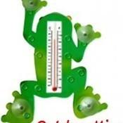 Frog_therm_thumb175